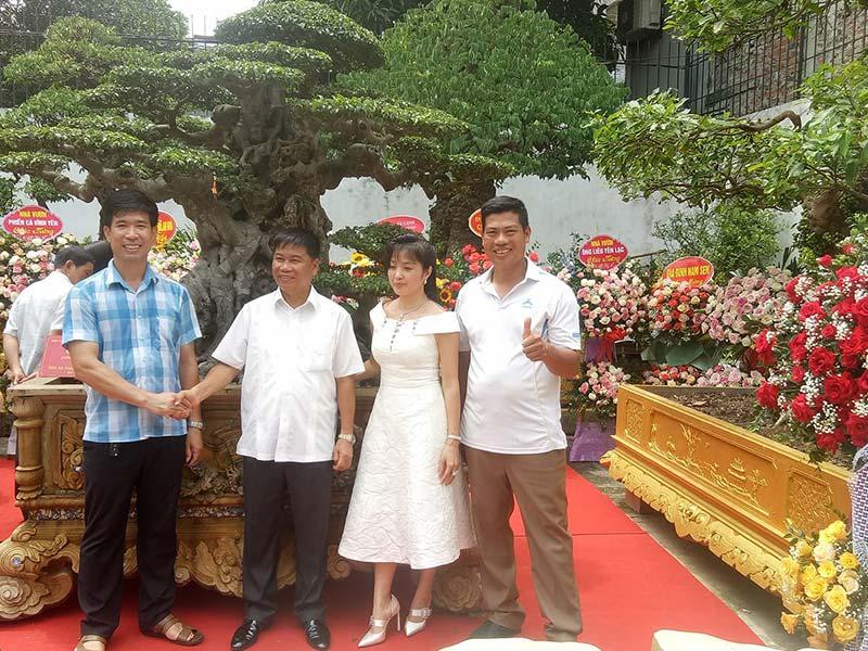 Đại gia Phú Thọ chi 28 tỷ đồng mua sanh cổ Tiên Lão Giáng Trần